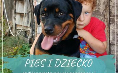 Bezpieczne dziecko – bezpieczny pies